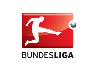 1. Bundesliga - 19. Spieltag - Saison 2012/13