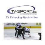LIVE im TV: Grizzlys Wolfsburg – Red Bull München, Eishockey DEL Finale, Spiel 2