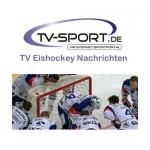 LIVE im TV: DEL Eishockey Viertelfinale Spiel 7 – Der Tag der Entscheidungen